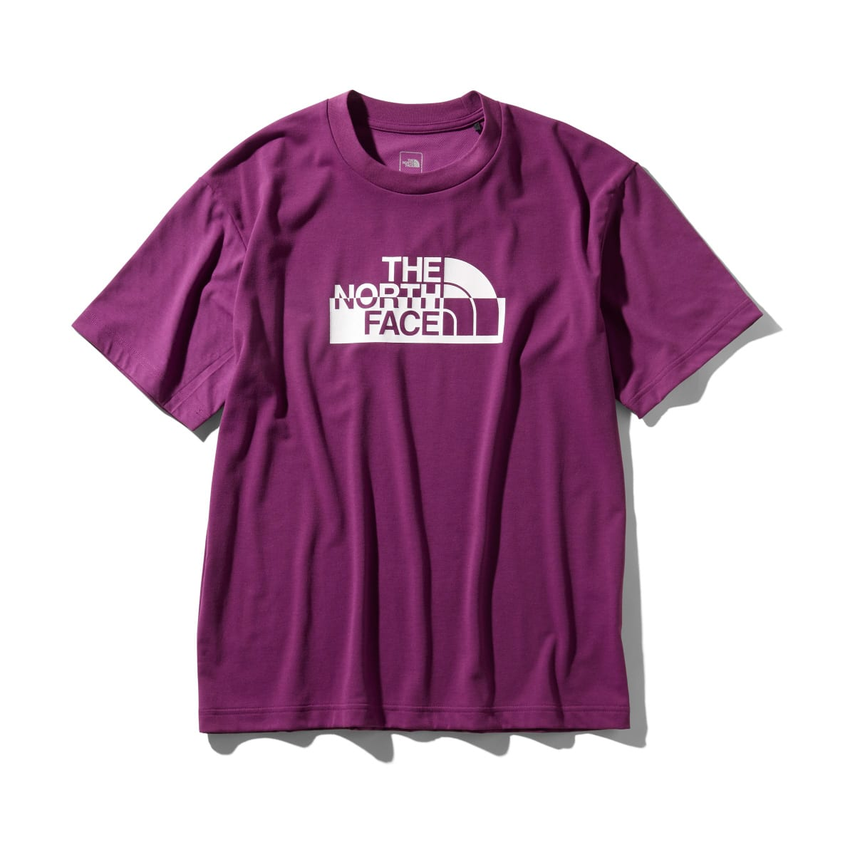 THE NORTH FACE S/S WATERSIDE GRAPHIC TEE  フロックスパープル 19SS-I_photo_large
